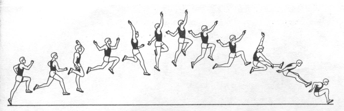 Реферат на тему прыжки в высоту и длину 4845