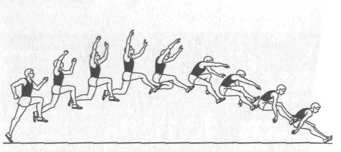 Техника прыжка в длину с разбега способом согнув ноги