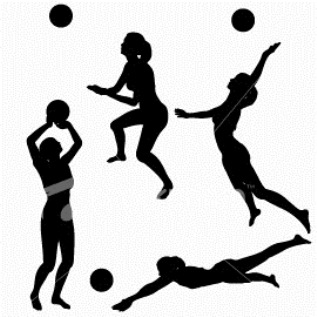Последовательность освоения теоретической подготовки волейболистов