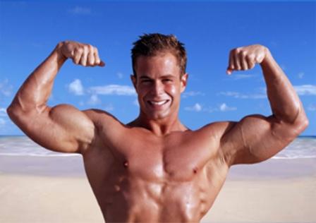 Энергетика мышечной деятельности