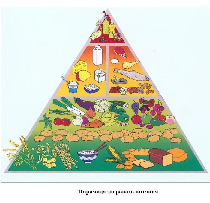 Принципы ВОЗ о здоровом питании.